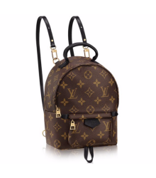 Рюкзак женский Louis Vuitton (Луи Виттон) Palm Springs Mini Brown
